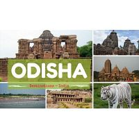 Book Your Package Wildlife Tour of Odisha