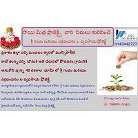 Karthika Vanam - 60 acres red sandal and white sandal farm land.