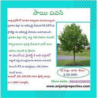 Anjani Properties- New Venture near Velagonda project,Prakasam Dist.