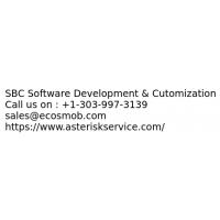 SBC Software Development & Cutomization