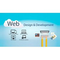 Are you guys looking for Web development services or WordPress development companies?