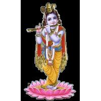 Vashikaran Astrologer in Yadgir   Vashikaran Specialist Pandit in Yadgir