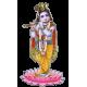 Vashikaran Astrologer in Yadgir | Vashikaran Specialist Pandit in Yadgir