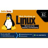 Get Linux Web Hosting Best for Every Business By Onlive Server