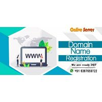 Top-Level Domain Name Registration at an Affordable Price